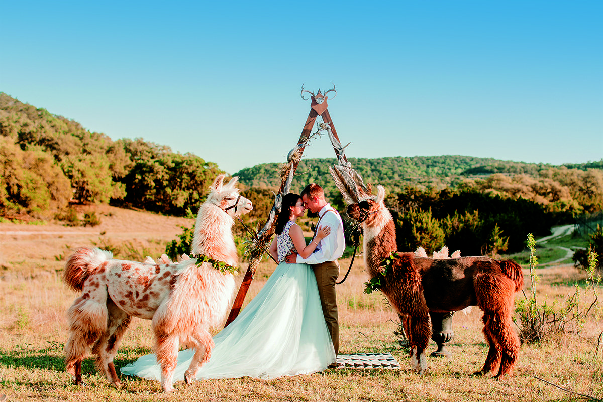 Leslie Lane Llama Farm-BridalBuzz-San Antonio Weddings