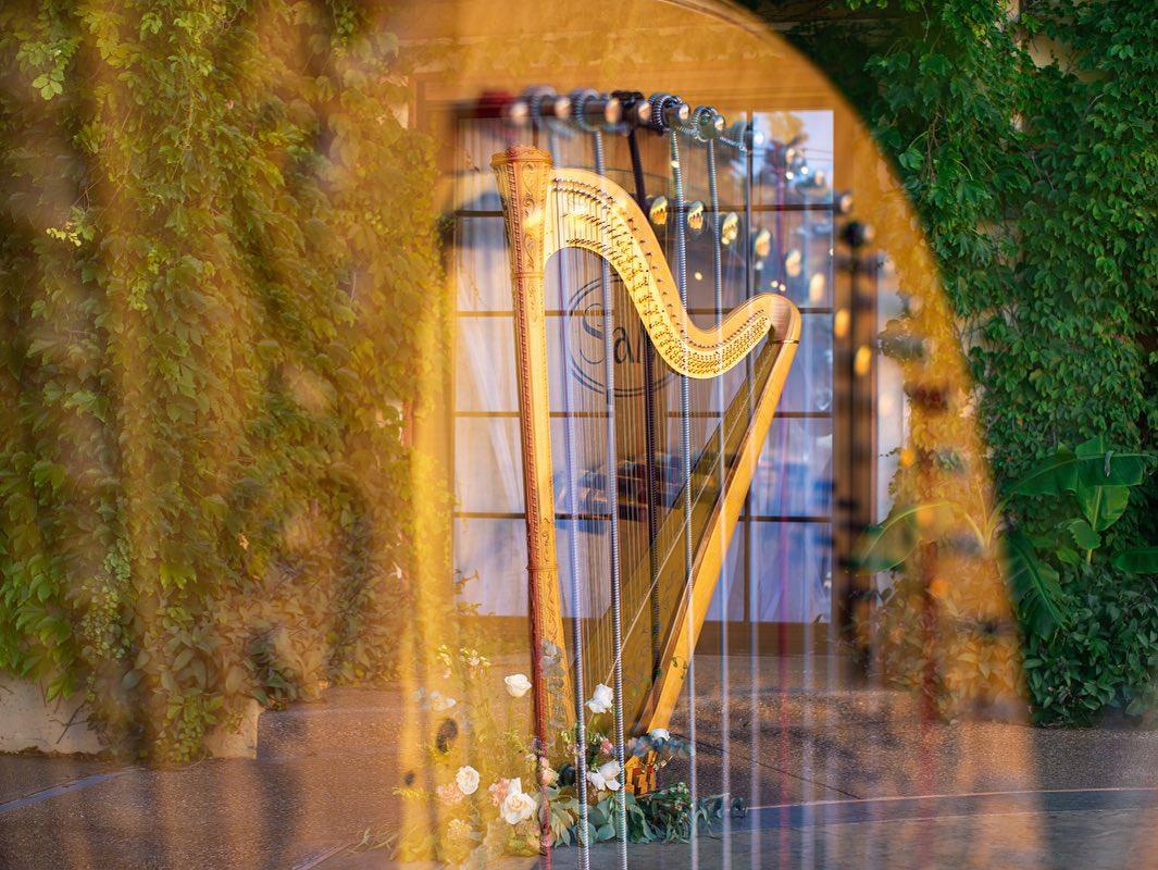Sonja Westberg Harpist-BridalBuzz-San Antonio Weddings