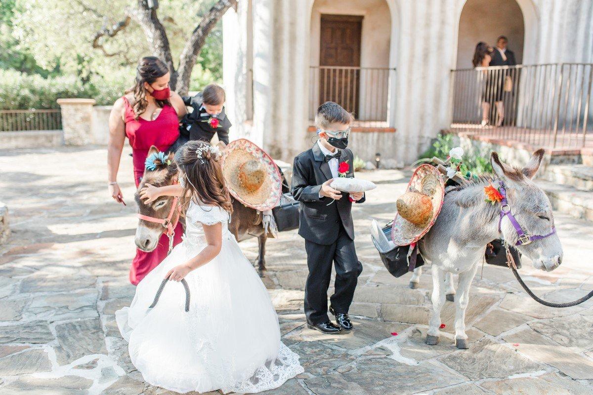 burros donkeys wedding flower girl and ring bearer