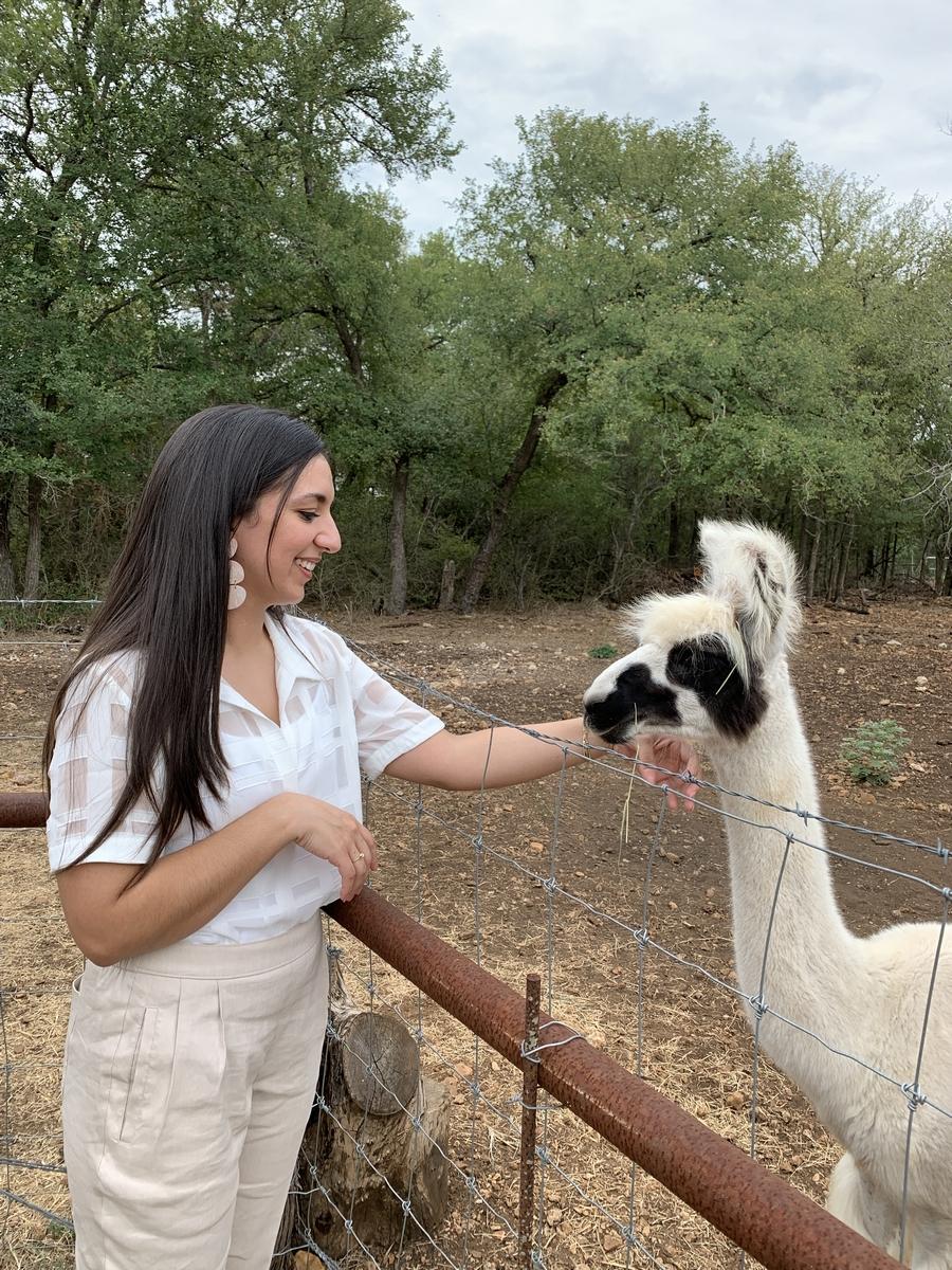 Erika petting llama at Harper Hill Ranch