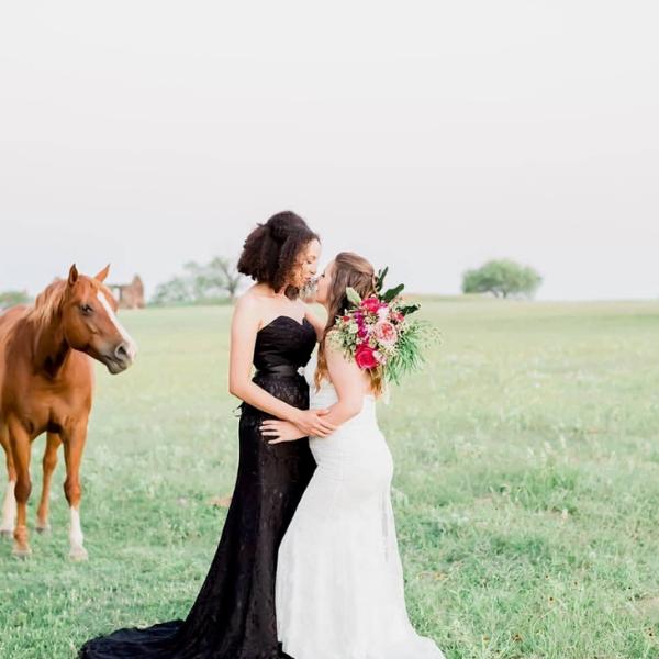Wedding venues with animals in San Antonio, Texas